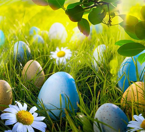 С радостным и светлым праздником Пасхи!