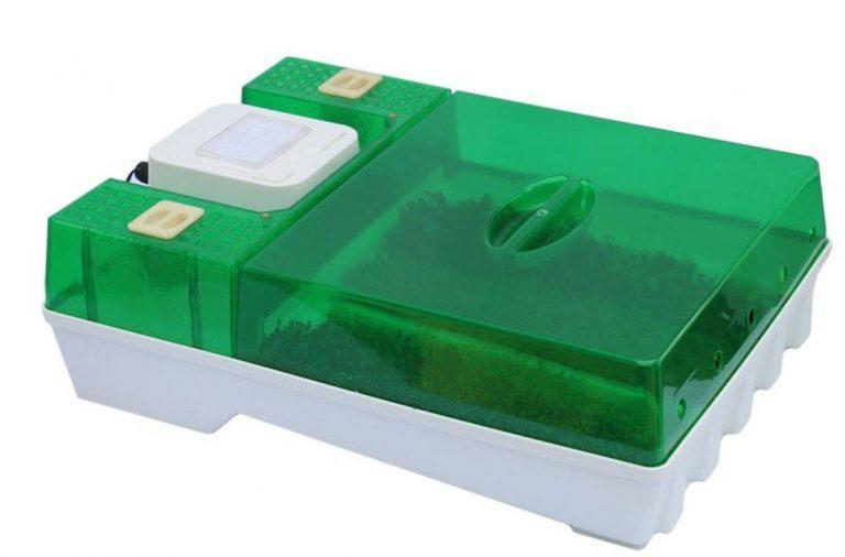 EasyGreen – обзор электрического проращивателя